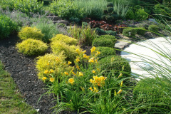 Planting Projects Maryland